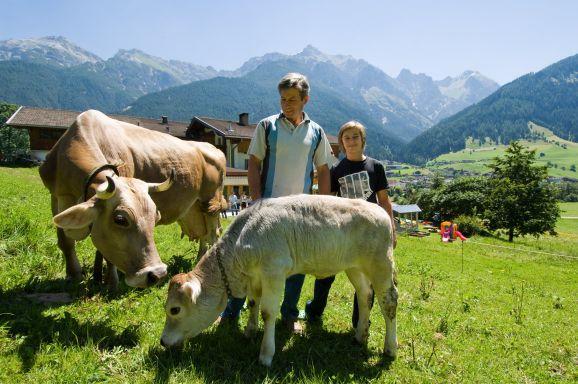 Stallführung am Bauernhof